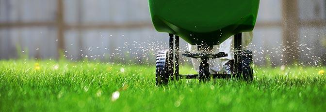 Удобрение газона